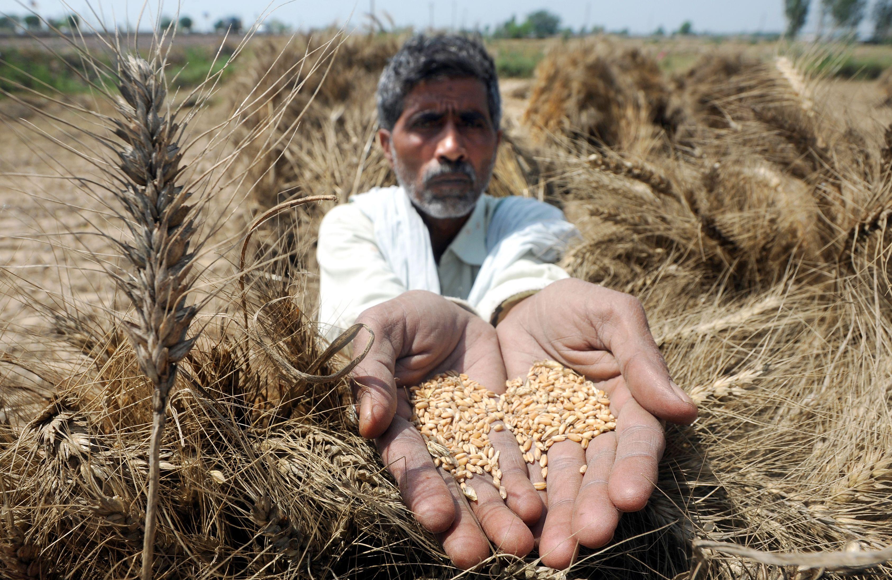 Budget2017_agriculture4.jpeg.jpeg
